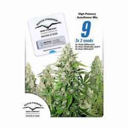 HIGH POTENCY AUTO MIX (9)