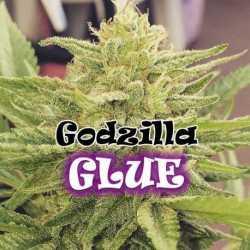 GODZILLA GLUE (25)