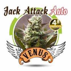 JACK ATTACK AUTO (10)