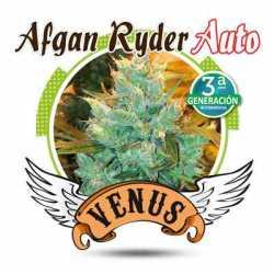 AFGAN RYDER AUTO (100)
