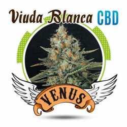 VIUDA BLANCA CBD (100)