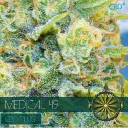 MEDICAL 49 (10) CBD
