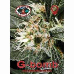 G-BOMB (10)