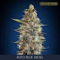AUTO BLUE DIESEL (3)