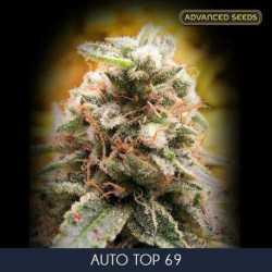 AUTO TOP 69 (3)
