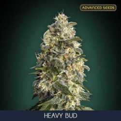 HEAVY BUD (10)