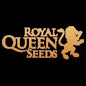 Royal Queen Seeds CBD