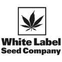 White Label Auto