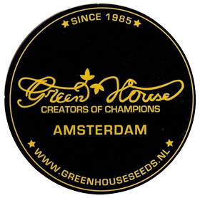 Green House Seeds CBD | www.merkagrow.com