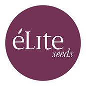 Élite Seeds CBD | www.merkagrow.com