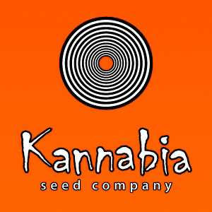 KANNABIA CBD | www.merkagrow.com